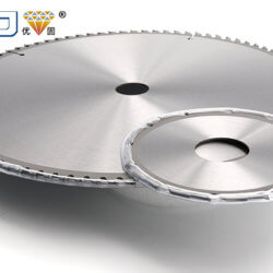 Factors for the Fracture of Woodworking Circular Saw Blades